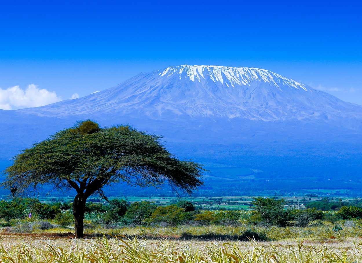 Viaggio di nozze in Tanzania