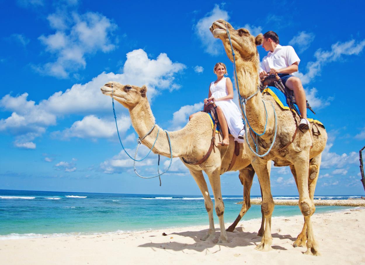 Destinazione Africa: dove andare, quando andare, cosa vedere per un viaggio di nozze in un continente affascinante e tutto da scoprire